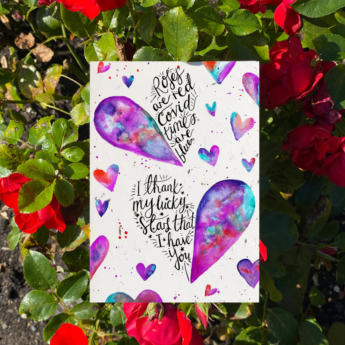 Roses Are Red - Plantable Wildflower Card | Greetings Card - The Naughty Shrew