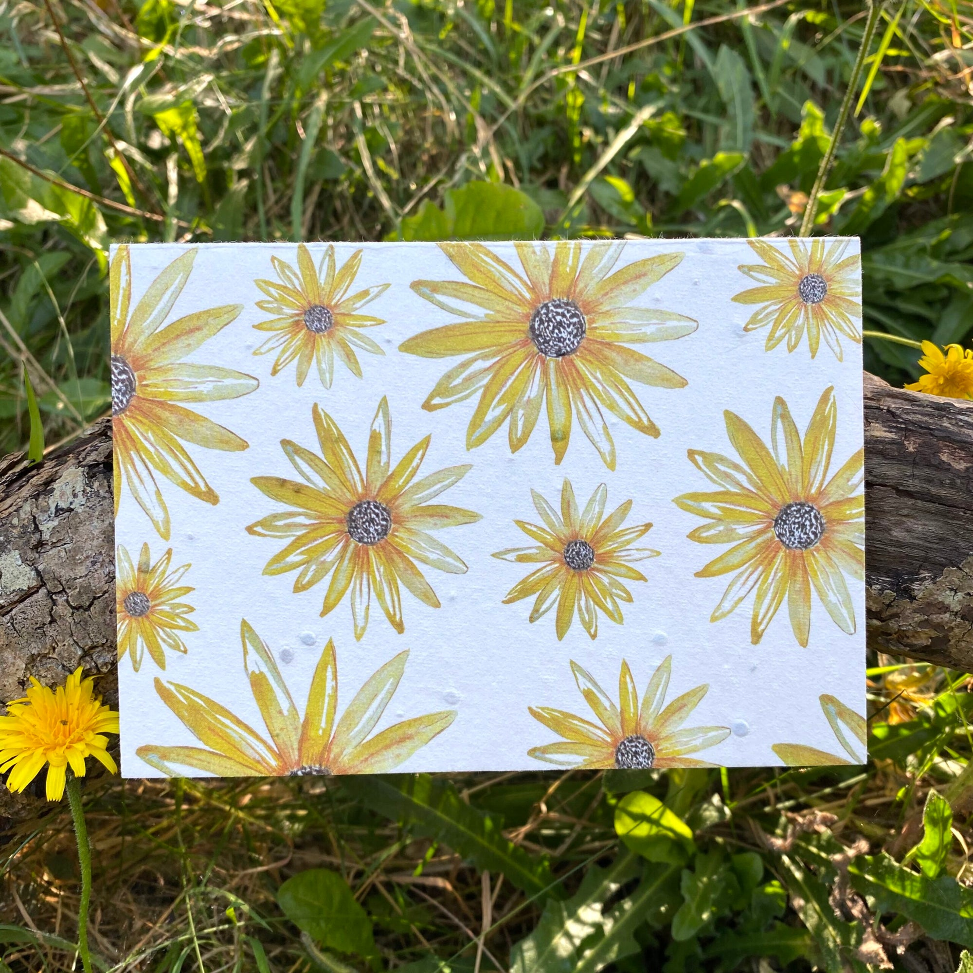 Rudbeckia Flowers - Plantable Wildflower Card | Greetings Card - The Naughty Shrew