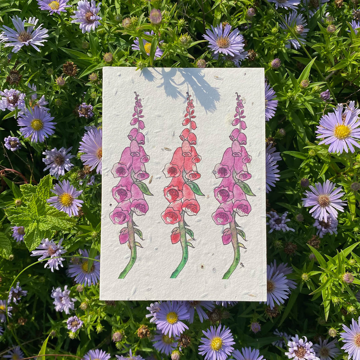 Foxglove Flowers - Plantable Wildflower Card | Greetings Card - The Naughty Shrew