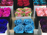 Mini Square Long Lasting Rose Box - Lifetime is Over 1 Year - The Royal Roses