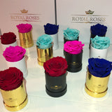 Single Long Lasting Rose Box - Lifetime is Over 1 Year - The Royal Roses