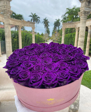 Oval Box Suede Pink - Special Collection of Real Long Lasting Roses - Lifetime is Over 1 Year - The Royal Roses