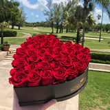 Real Long Lasting Roses - Heart Shaped Box - Lifetime is over 1 year