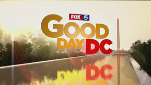 FOX News- Good Day DC- A toy that can teach your child Black History