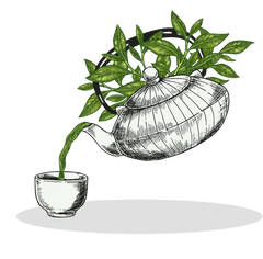 digital artwork Japanese tea pot pouring matcha green tea into a drinking cup, white background