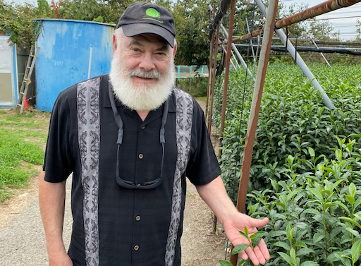 Dr. Andrew Weil shows an authentic matcha tea leaf from a hidden tea field in Uji, Japan