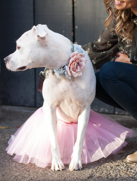 """BEST SELLER: Dog Tulle Tutu in Pink"""