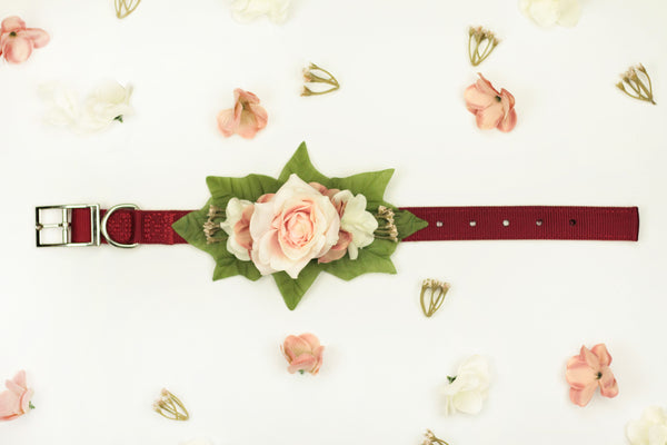 """BARX + BLOOMS NEW RELEASE: Uptown Girl"" Collar 
