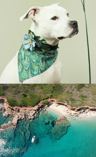 """BARX + BLOOMS NEW RELEASE: ""Take Me To The Aegean Sea"" Set 