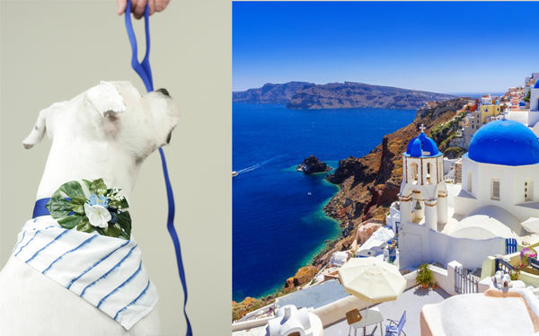 """BARX + BLOOMS NEW RELEASE: ""Santorini's Calling!"" Set 