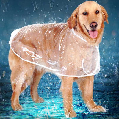 Golden Retriever Wearing a Waterproof Clear Transparent Dog Raincoat With Hood by  Pawsome Market