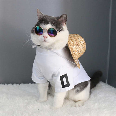 Cute Cat wearing a hat and the hippie Colorful Retro Cool Dog Sunglasses Pawsome Market