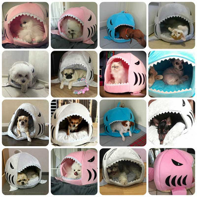 Customer Reviews Shark Cat Cave Dog Puppy Cute Cheap Buy Pawsome Market