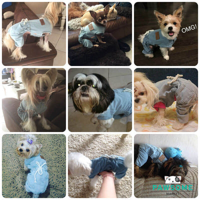 Customer reviews Denim Dog Overalls Pawsome Market