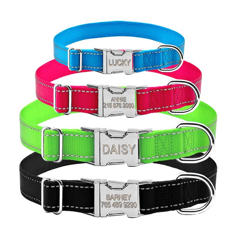 Engraved Dog Collar With Personalized Name & Number Girl With Chihuahua