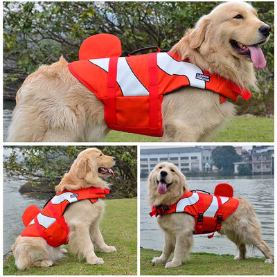 Big Golden Retriever Dog wearing the Red Clown Fish Design Safety Dog Life Jackets - Salty Paws