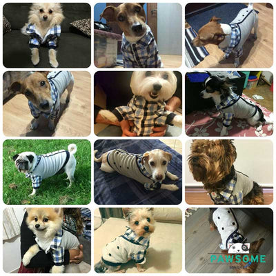 dog wedding clothes Dapper Gent Plaid Blue White Dog Shirt Pawsome Market