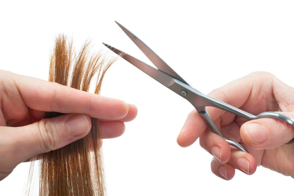 TRIMMING SPLIT ENDS DOESN'T MAKE YOUR HAIR GROW FASTER AT ALL!