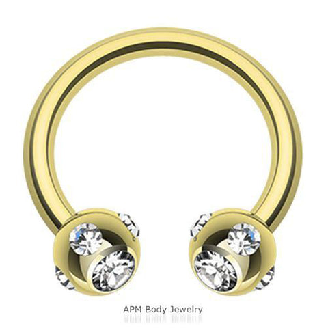 16G Multi CZ Gold Titanium Horseshoe