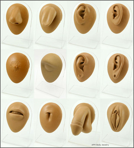 Body Piercing Jewelry Wholesale I Body Part Silicone Display