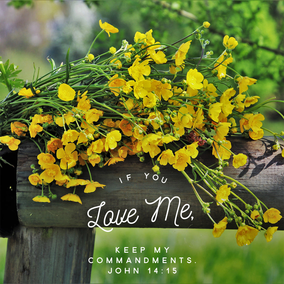 Inspirational Verse of the Day - Keep My Commandments