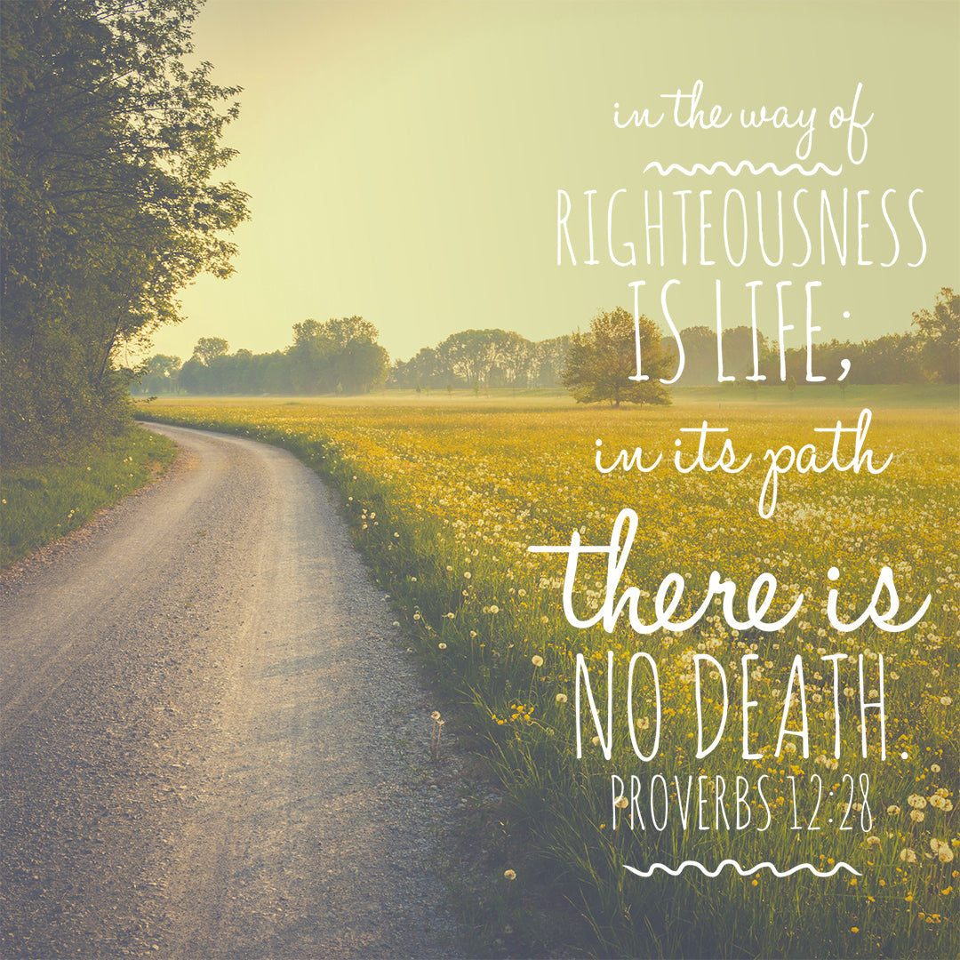 Inspirational Verse of the Day - Way of Righteousness