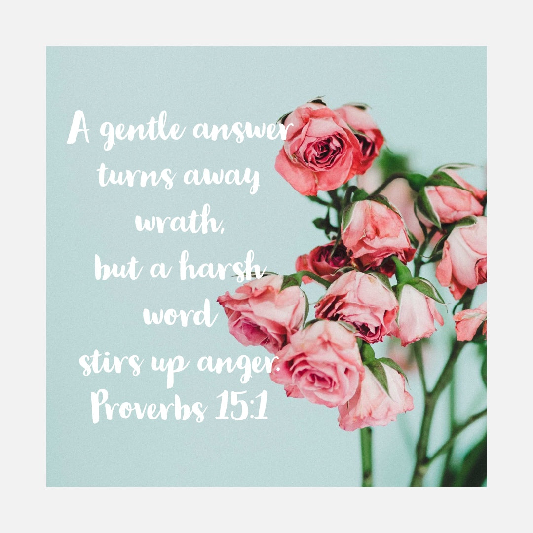 Proverbs 15:1 - A Gentle Answer