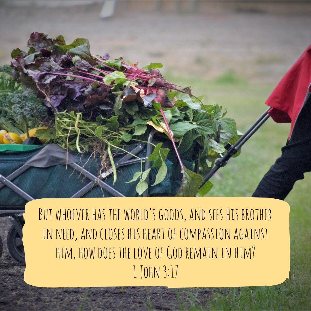 1 John 3:17 - Compassion for People's Needs