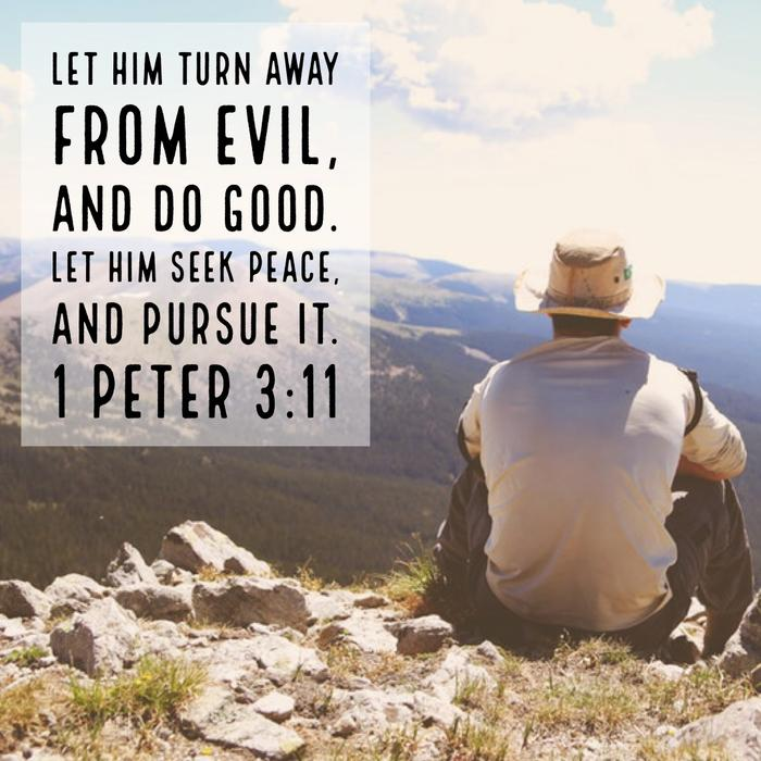 1 Peter 3:11 - Seek Peace and Pursue It
