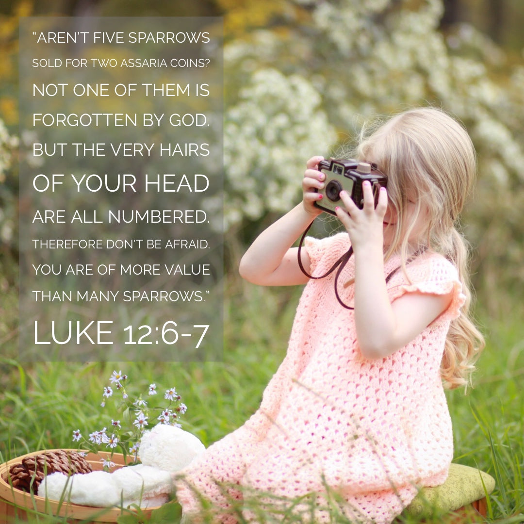 Luke 12:6-7 - More Value Than Many Sparrows