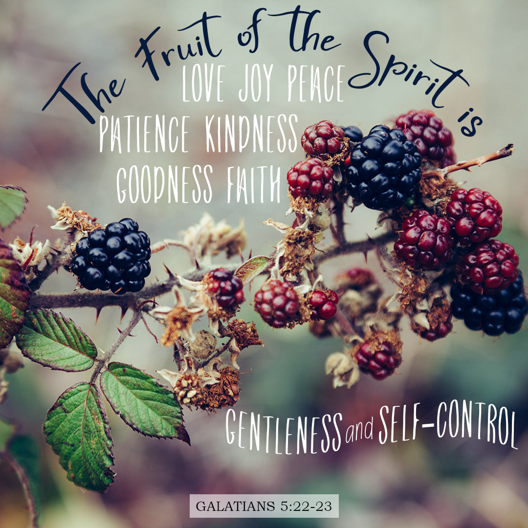 Galatians 5:22-23 - Fruit of the Spirit - Bible Verses To Go