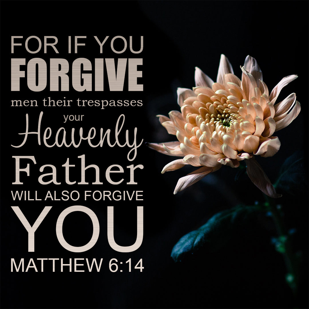 Matthew 6:14 - Forgive - Bible Verses To Go