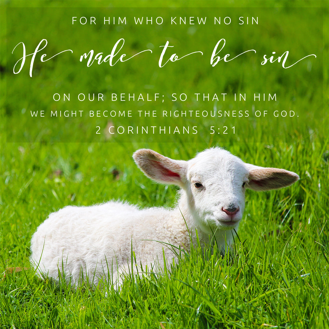 2 Corinthians 5:21 - For Him Who Knew No Sin - Bible Verses To Go