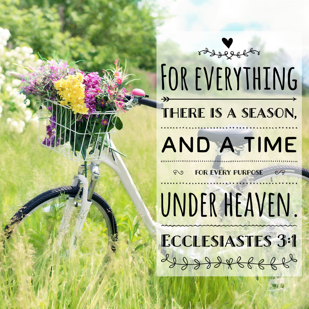 Ecclesiastes 3:1 - For Everything There Is a Season - Bible Verses To Go