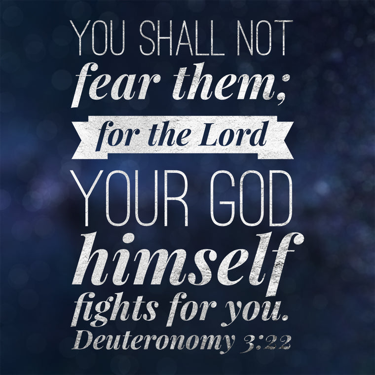 Deuteronomy 3:22 - God Fights for You