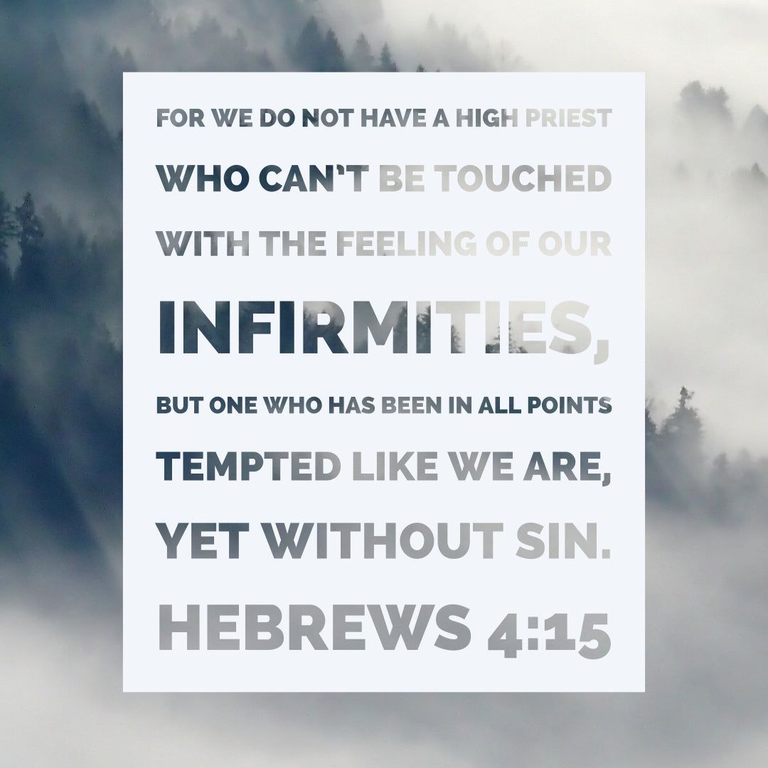 Hebrews 4:15 - Yet Without Sin - Bible Verses To Go