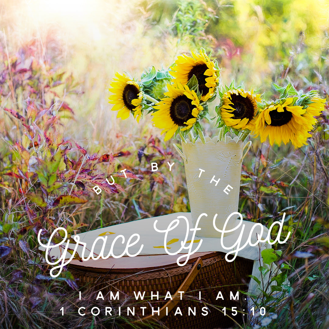1 Corinthians 15:10 - Grace of God - Bible Verses To Go