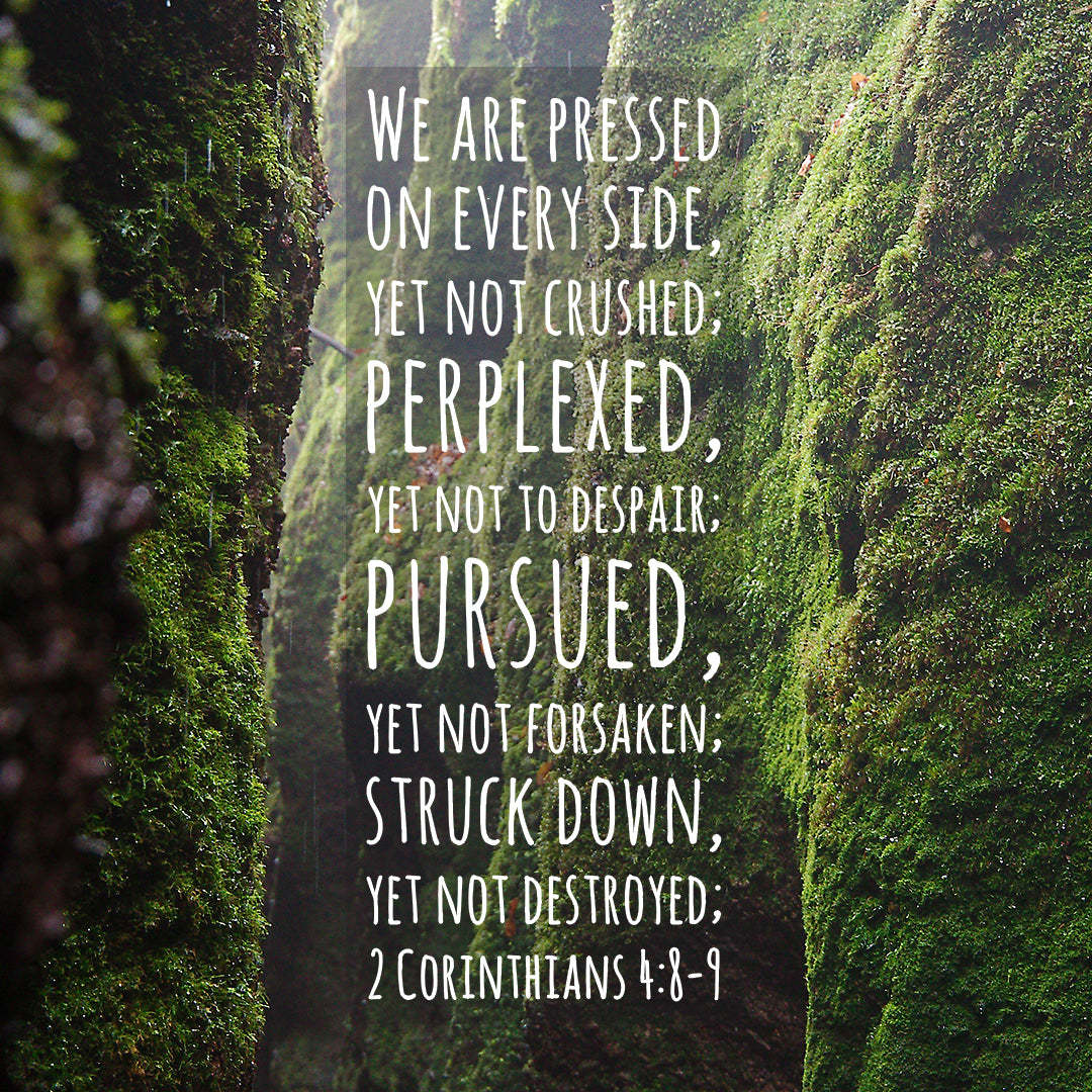 2 Corinthians 4:8-9 - Not Forsaken - Bible Verses To Go