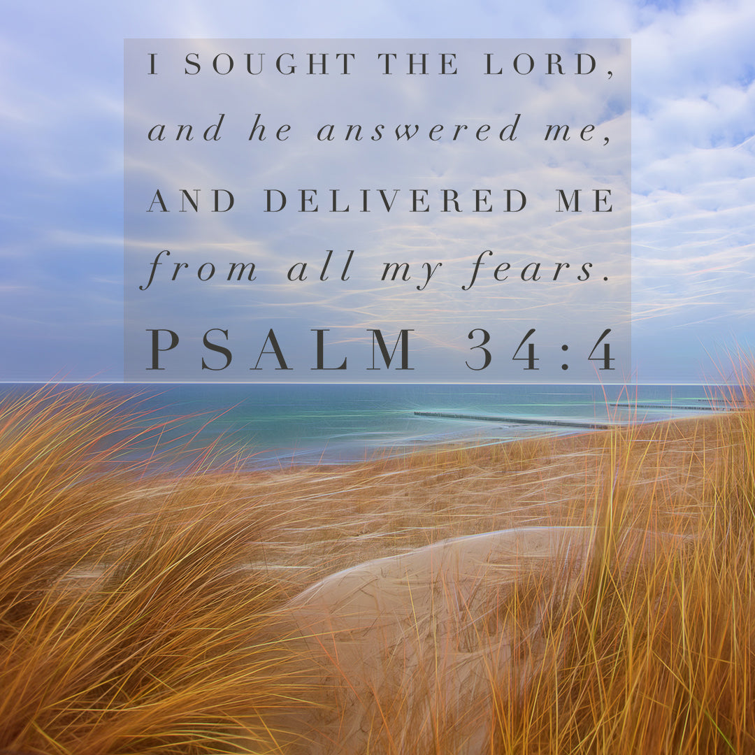 Psalm 34:4 - I Sought the Lord - Bible Verses To Go