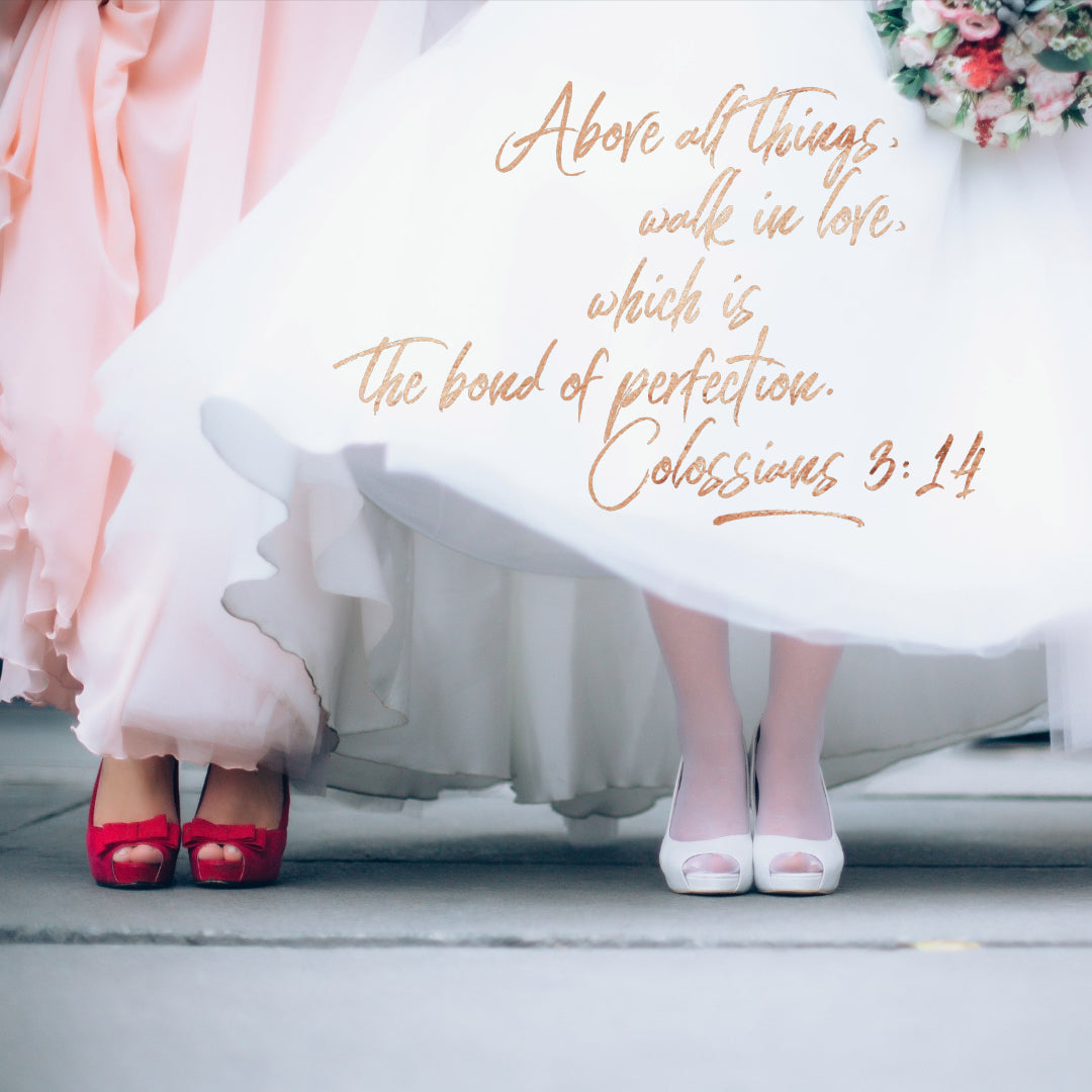 Colossians 3:14 - Walk in Love - Bible Verses To Go