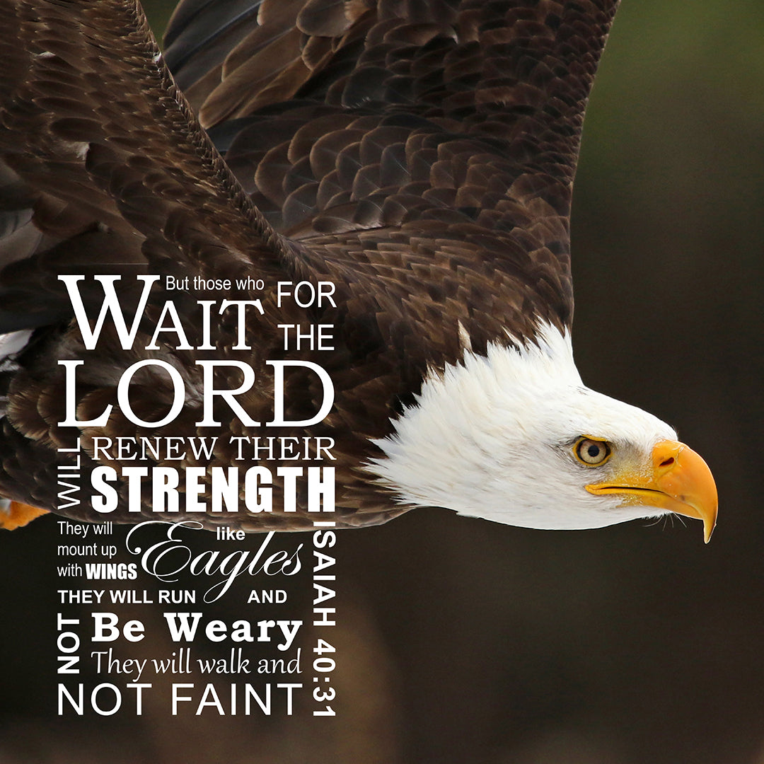 Isaiah 40:31 - Wings Like Eagles - Bible Verses To Go