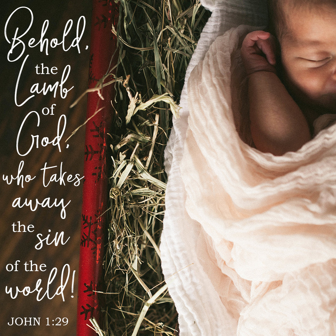 John 1:29 - Behold, the Lamb of God - Bible Verses To Go