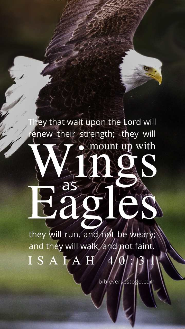 Christian Wallpaper - Bald Eagle Isaiah 40:31