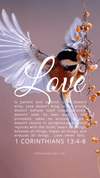 Christian Wallpaper – Birdflight 1 Corinthians 13:4-8
