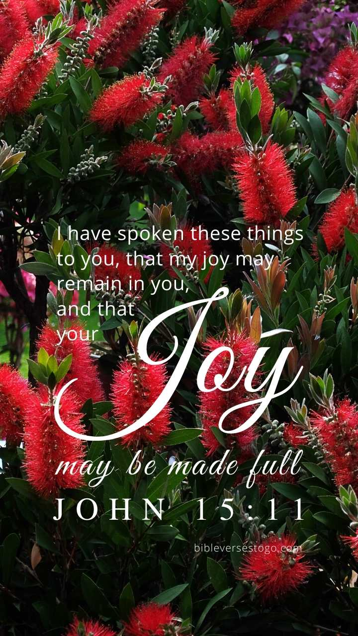Christian Wallpaper - Bottlebrush John 15:11