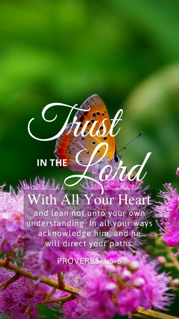 Christian Wallpaper – Butterfly Proverbs 3:5-6