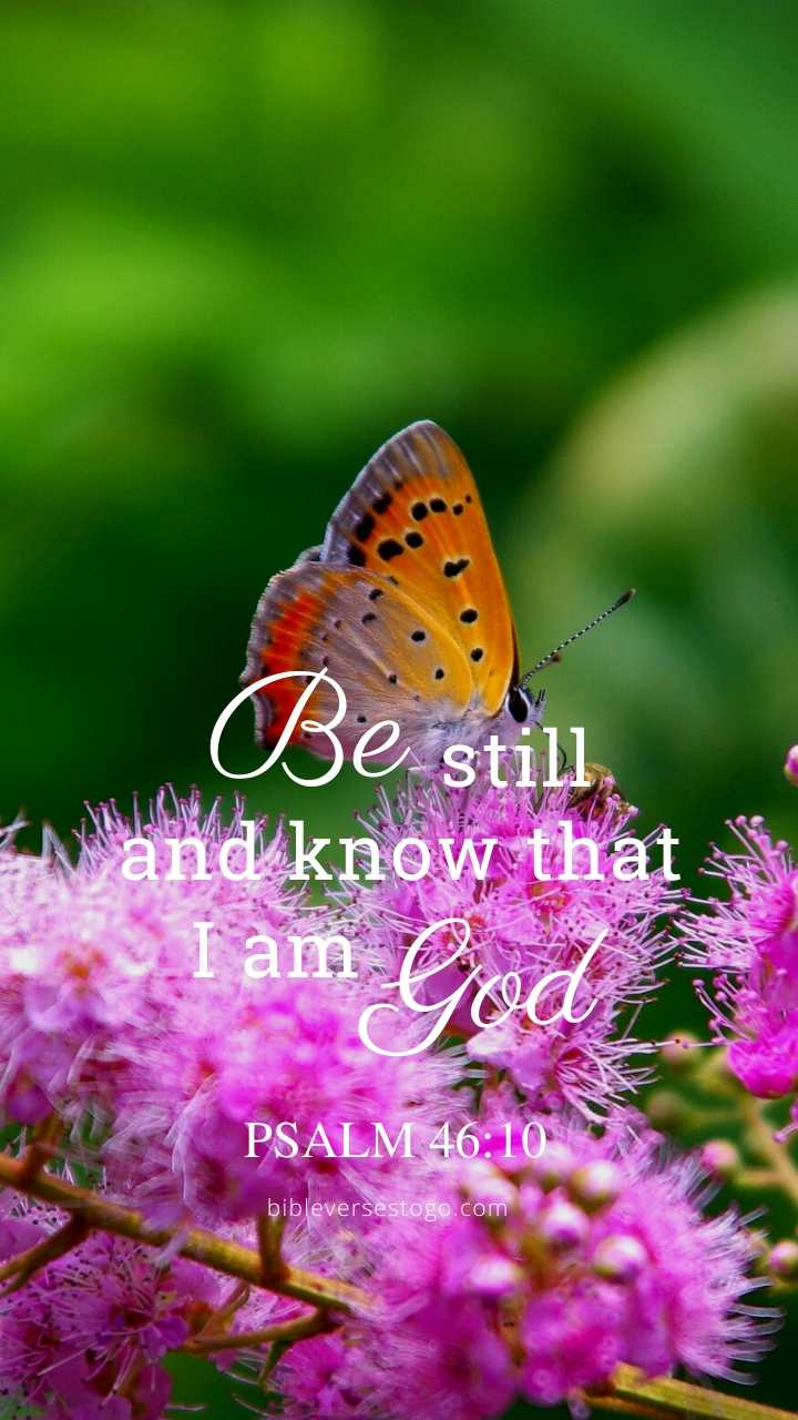 Christian Wallpaper – Butterfly Psalm 46:10