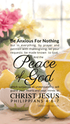 Christian Wallpaper – Citrus Tea Philippians 4:6-7