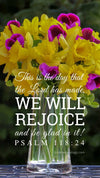 Christian Wallpaper – Daffodils Psalm 118:24