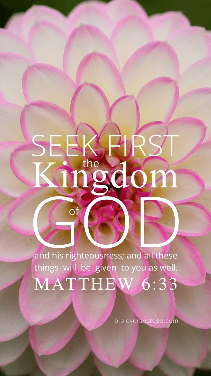 Christian Wallpaper – Dahlia Matthew 6:33